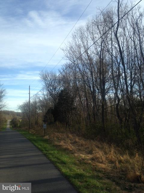 THREE LOTS HERE. Lot 4 did not perk. Lots 5 and 6 did perk! All corners have been marked. Buy lots 4 and 5 for 49500 and Lot 6 for $49500. Or, take them all for $99000. River access community only minutes from Shepherd University, NCTC,  and Shepherdstown! What an opportunity!