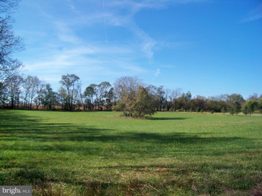 10+ acre beautiful building site in a very low density, upmarket subdivision, just outside of historic Shepherdstown WV, Horses allowed. Potomac River down the hill, Shepherdstown and all its wonderful ameneties just minutes away. Come join the community its wonderful. May be purchased in conjunction with the beautiful  residential JF10164768