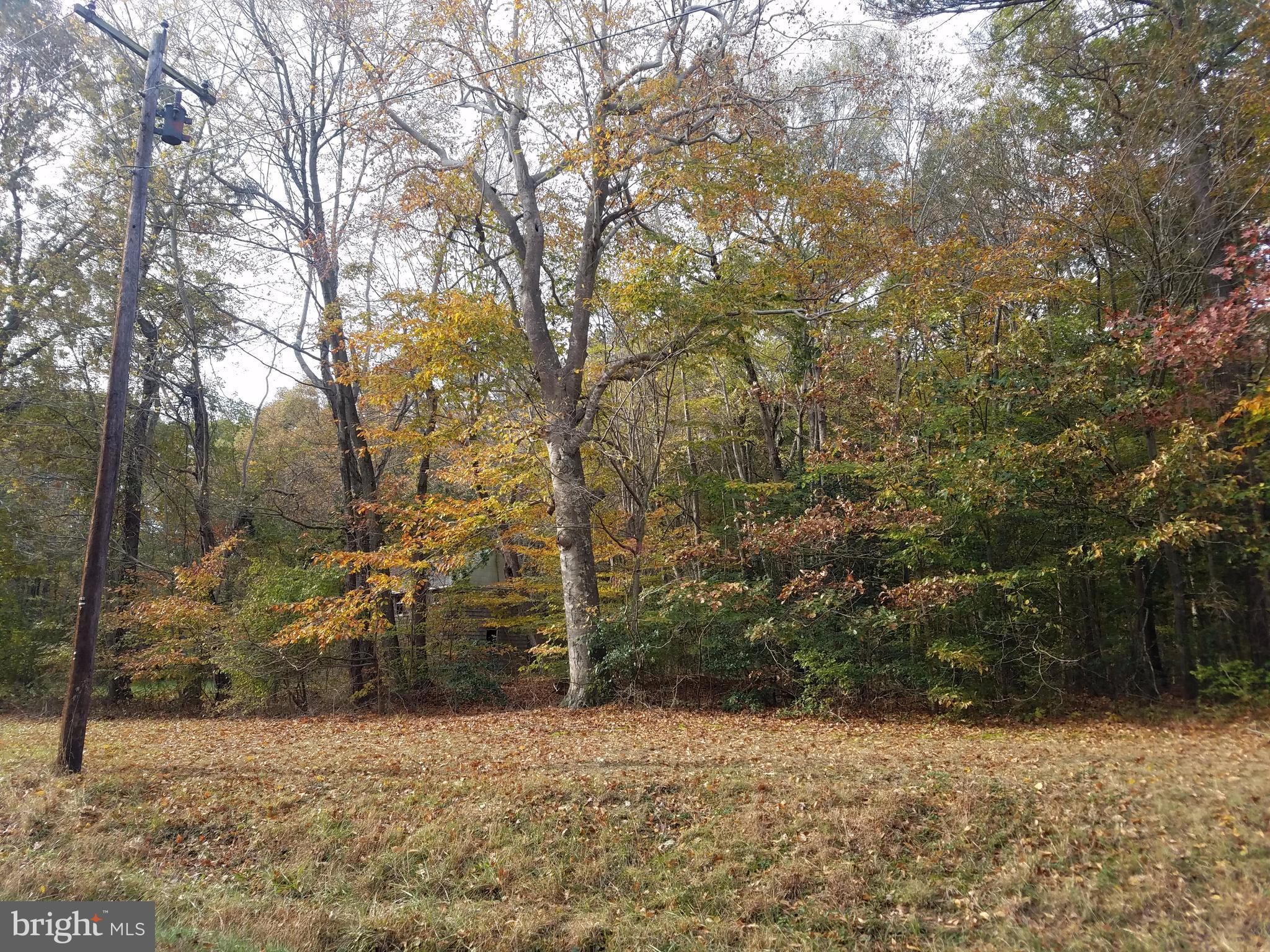 IVYTOWN ROAD, TRAPPE, MD 21673