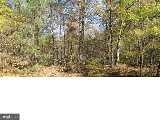 MEADOWBROOK ROAD, FEDERALSBURG, MD 21632  Photo 12
