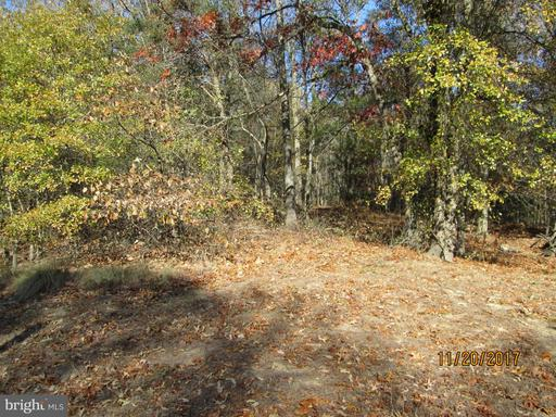 MEADOWBROOK ROAD, FEDERALSBURG, MD 21632  Photo 10