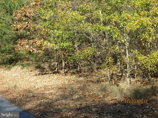MEADOWBROOK ROAD, FEDERALSBURG, MD 21632  Photo 9