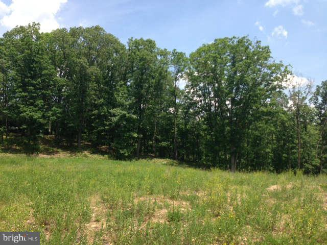 TIMBERLAKE DRIVE, NEW CREEK, WV 26743