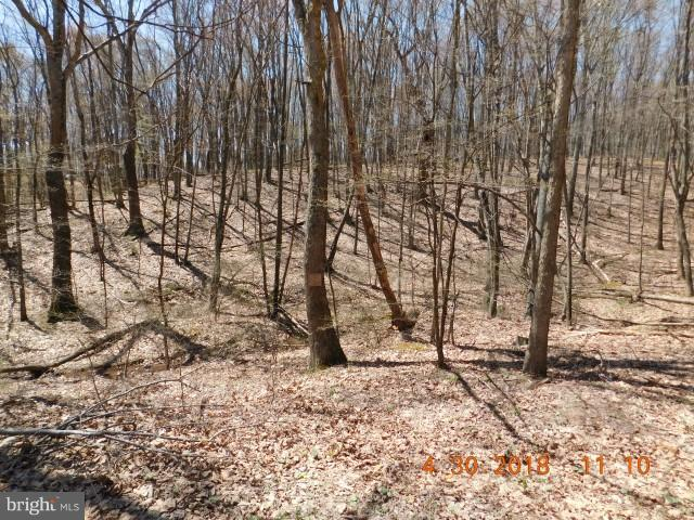 LOT 26 NORTH RIVER WILDERNESS, DELRAY, WV 26714