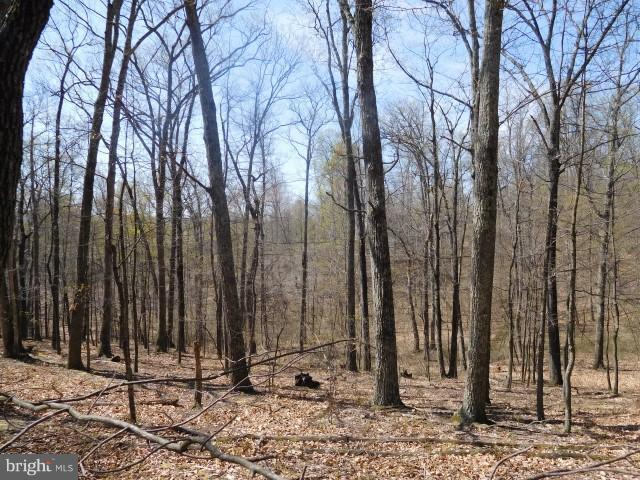 LOT 1 MOUNTAIN VIEW ESTATES, DELRAY, WV 26714