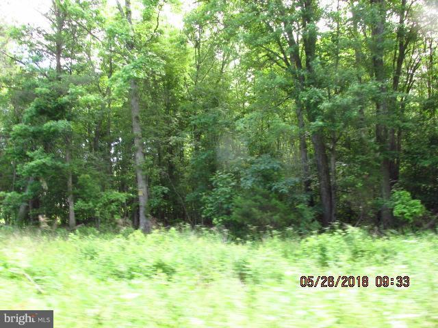 0 BURNETTS ROAD, MILFORD, VA 22514