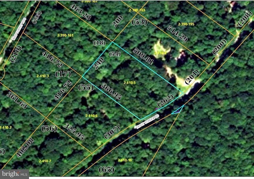 TROUT STREAM ROAD, LOST RIVER, WV 26810
