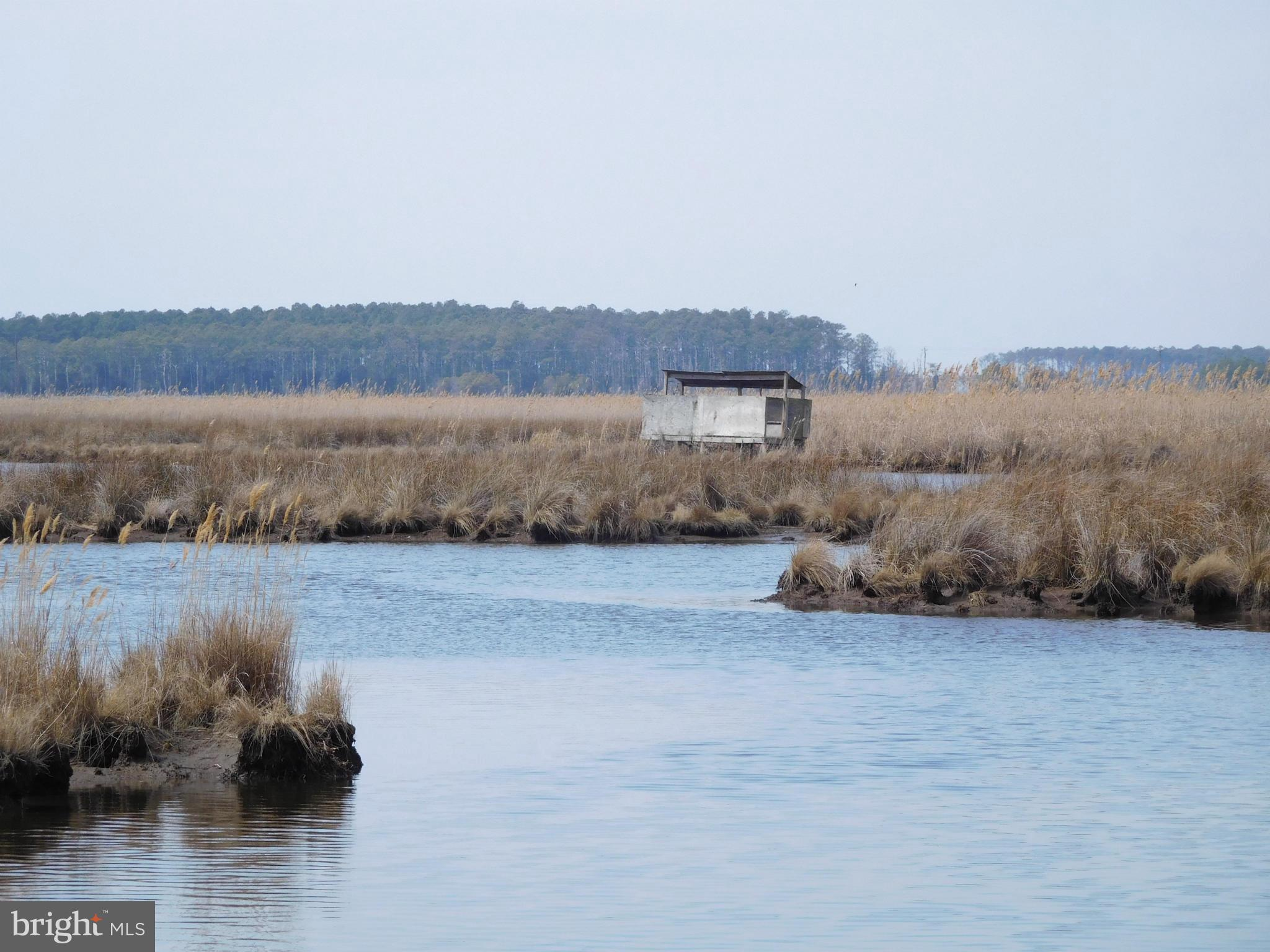 FARM CREEK ROAD, TODDVILLE, MD 21672