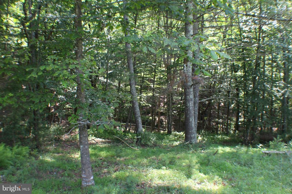 Lot 4A-3A Sweeny Place, Franklin, WV 26807