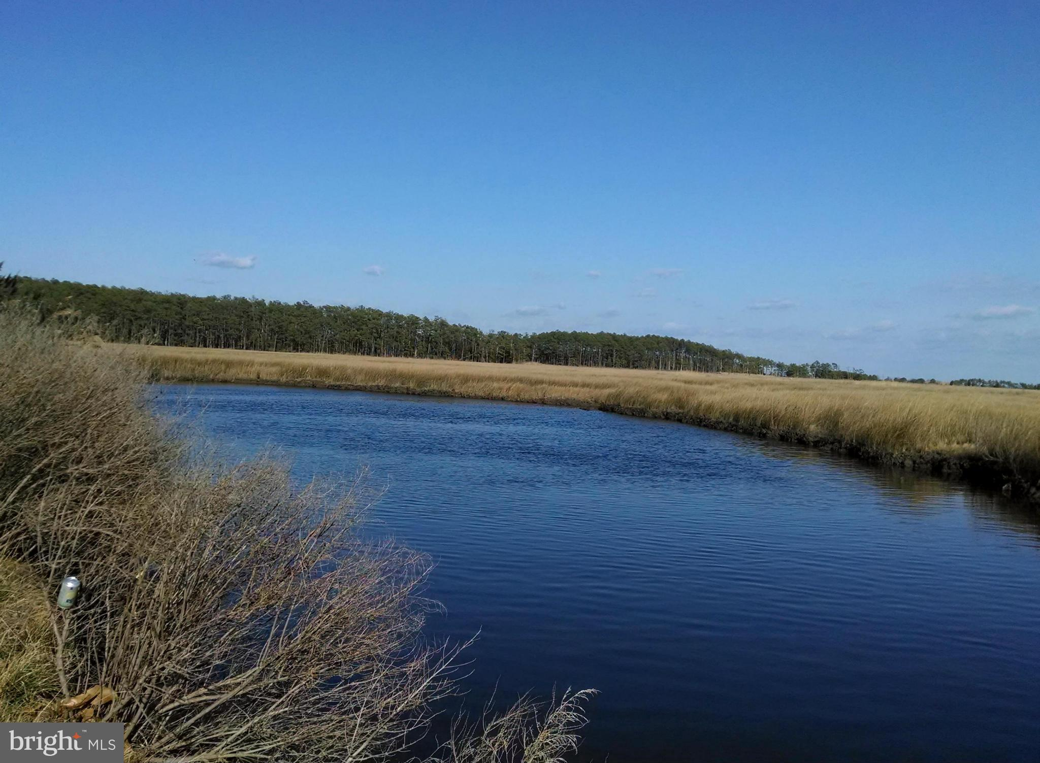2011 BISHOPS HEAD ROAD, TODDVILLE, MD 21672