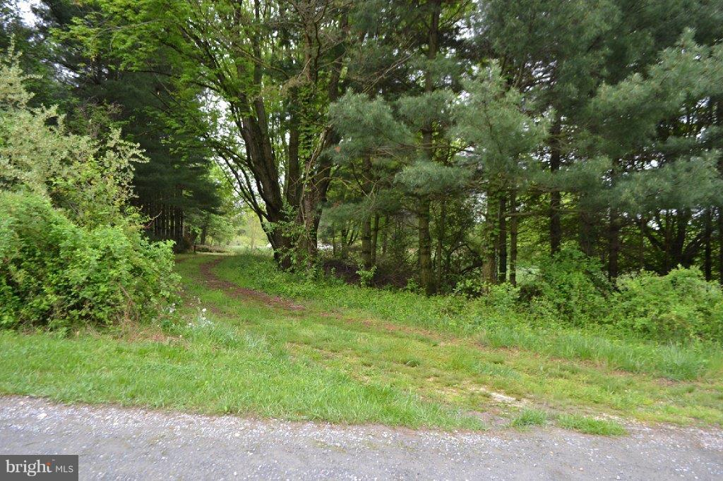 88 GROFF FARM LANE, CONOWINGO, MD 21918