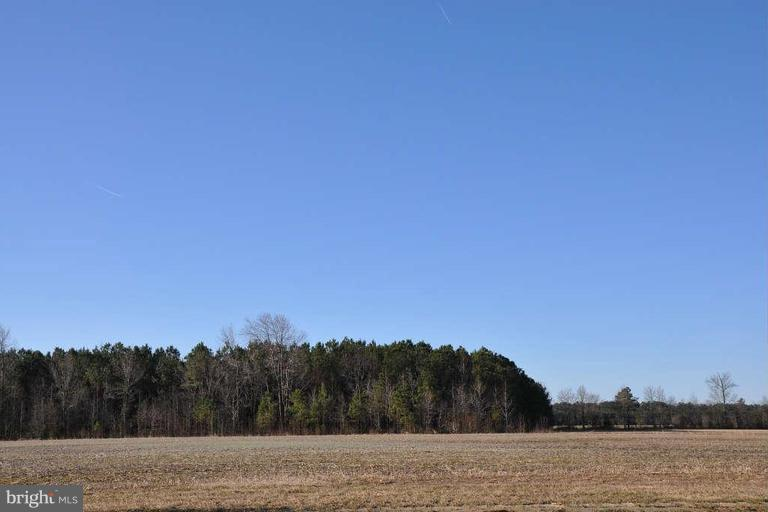 Beautiful 17+/- acre gated residential community building lot in country setting with modern subdivision amenities.  Located in close proximity to Cambridge, Salisbury, Delmar, Laurel, and Seaford!