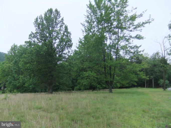 BUCK VALLEY AND OLD 126 ROAD, WARFORDSBURG, PA 17267