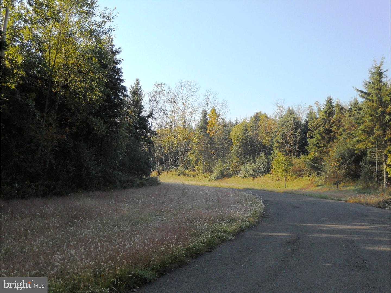 1207 EVERGREEN ROAD, RIEGELSVILLE, PA 18077
