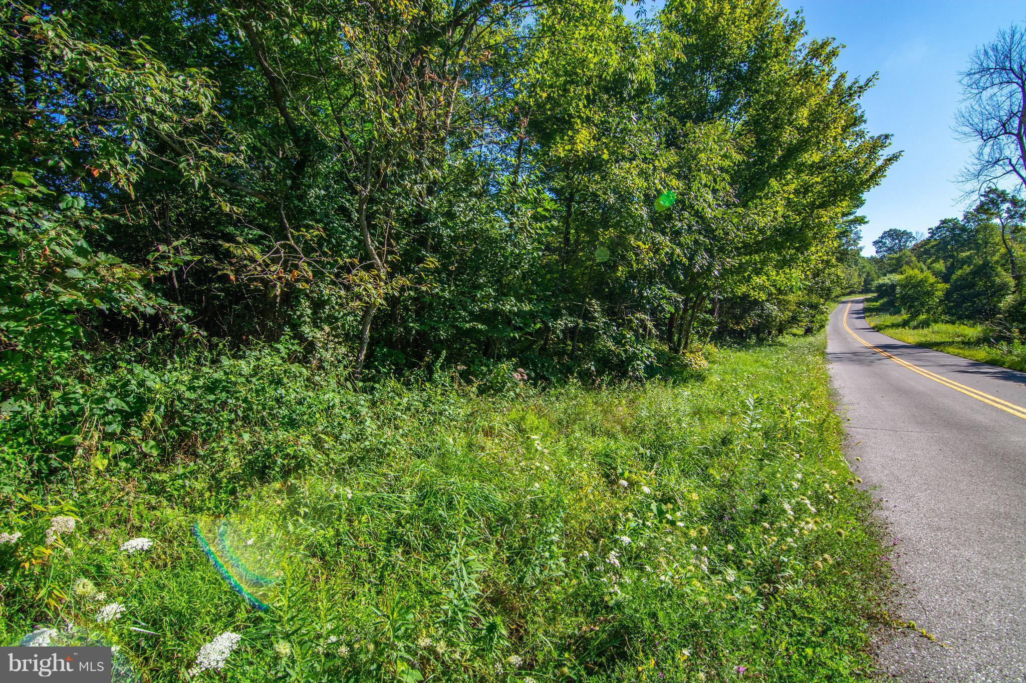 Devils Half Acre, Accident, MD 21520   Railey Realty