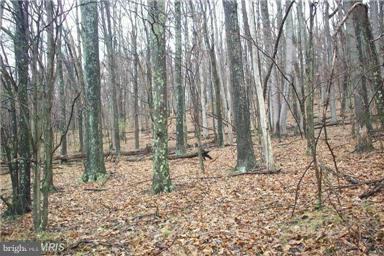 0 Timberline, Lost River, WV 26810