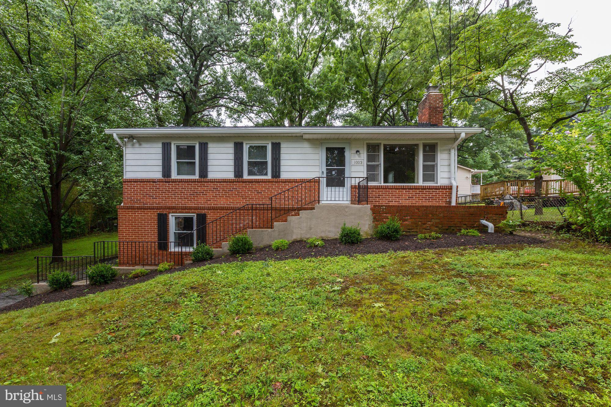 1003 Rosemere Ave, Silver Spring, MD, 20904