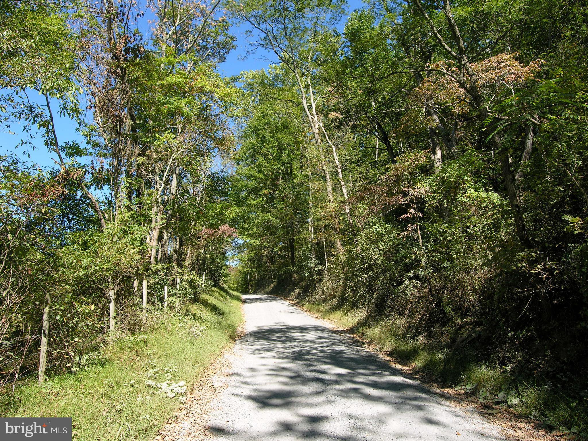 GID BROWN HOLLOW ROAD, WASHINGTON, VA 22747