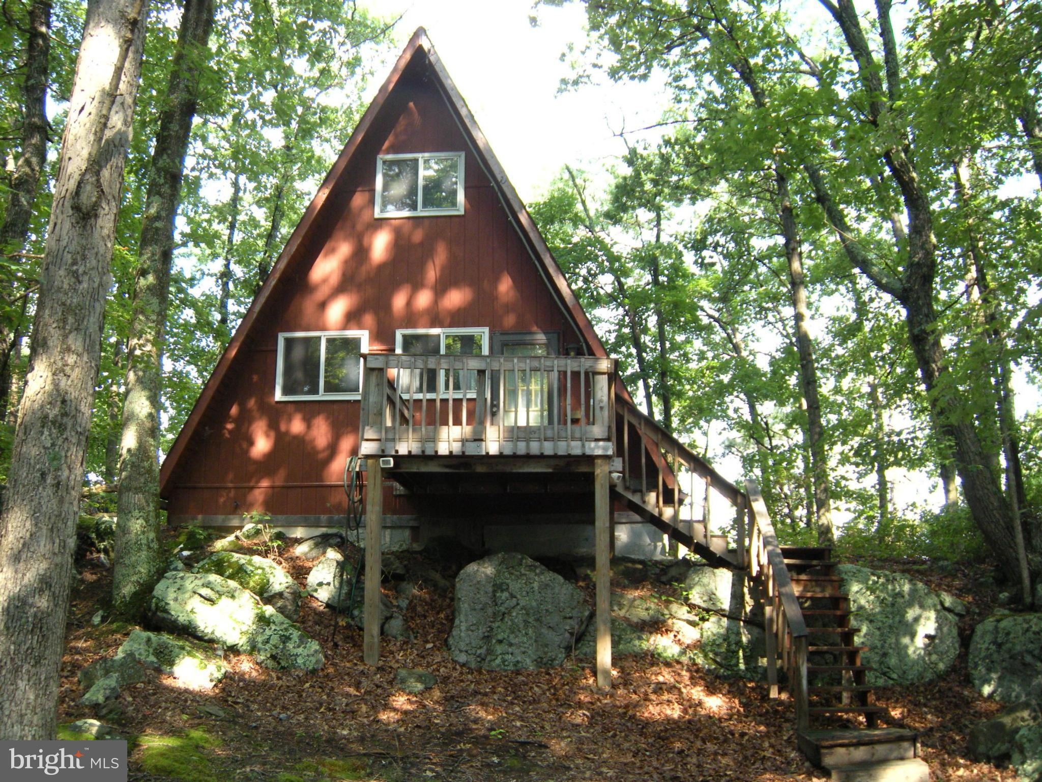 717 HAINES DRIVE, CAPON BRIDGE, WV 26711
