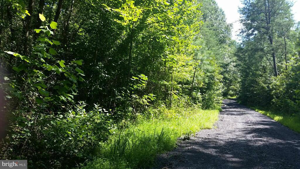 PORT RAPIDS ROAD, RICHARDSVILLE, VA 22736