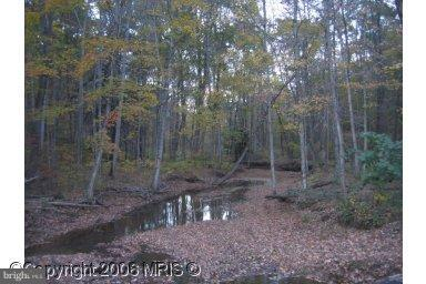 ENCHANTED FOREST - 20 beautiful wooded acres with stream running through it,  Located just minutes from I70 off Pious Ridge Road and just 6 miles from Berkeley Springs.  Protective covenants & restrictions (no hunting), current septic permits.