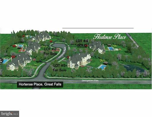 802 Hortense Pl Great Falls VA 22066