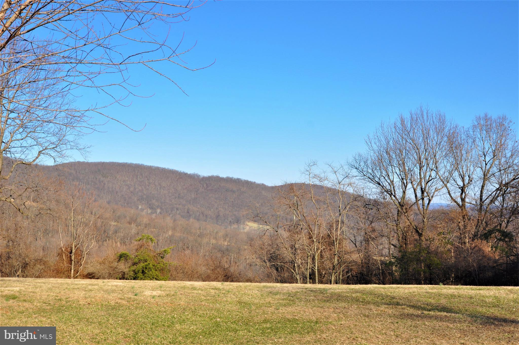 0 VIRGINIA PINES LANE, CHESTER GAP, VA 22623