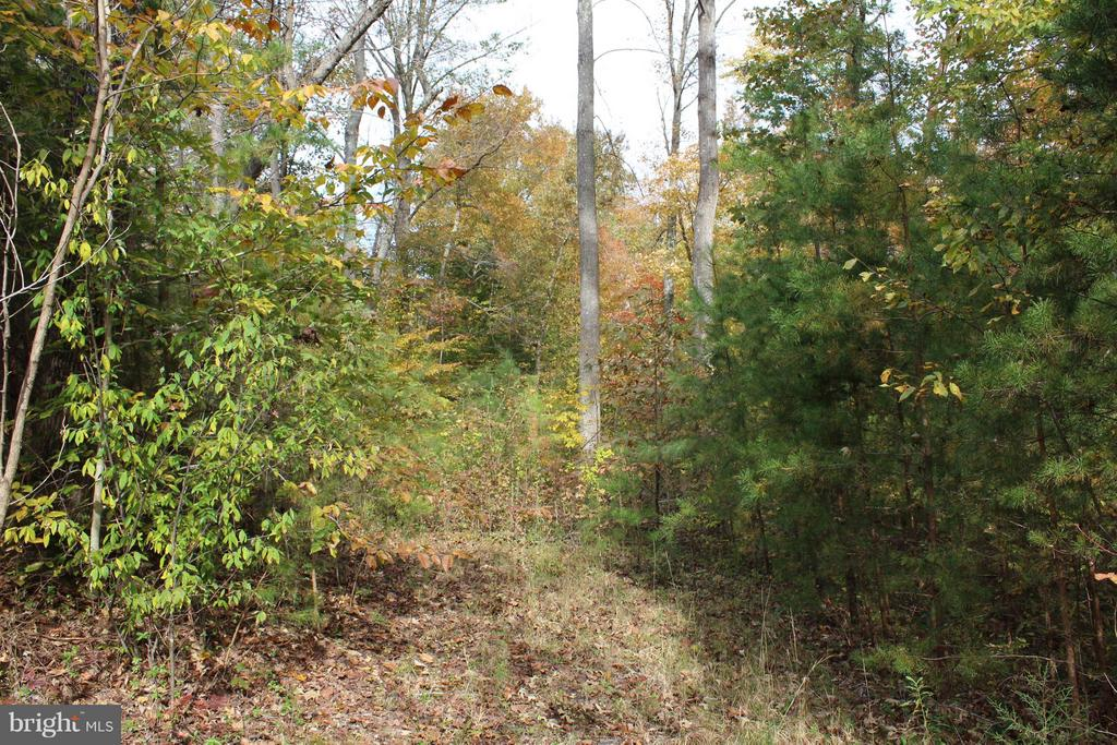 Wow 4.35 Ac; mostly hardwoods w/privacy near Fredericsburg and Dahgren. Needs an updated 3 BR conventional perc.  Site will accomodate walk-out Basement.
