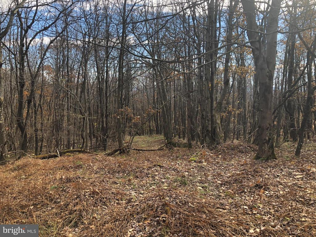 SHAWNEE VIEW ROAD, CENTRAL CITY, PA 15926