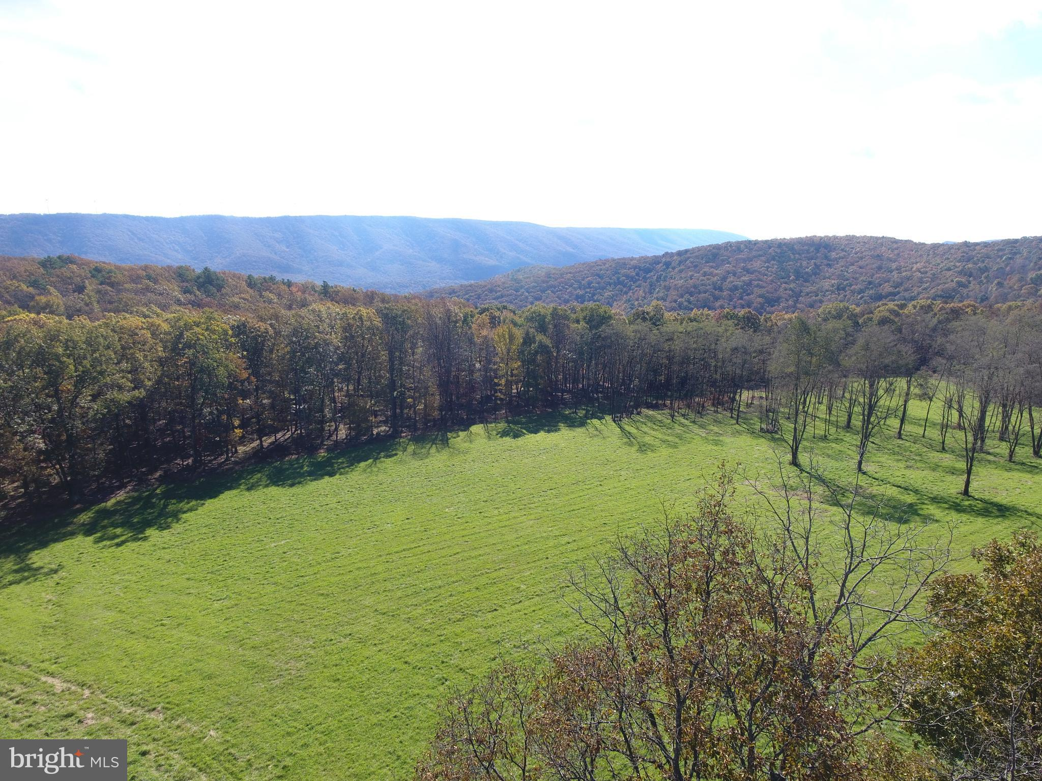 BURGESS HOLLOW, NEW CREEK, WV 26743