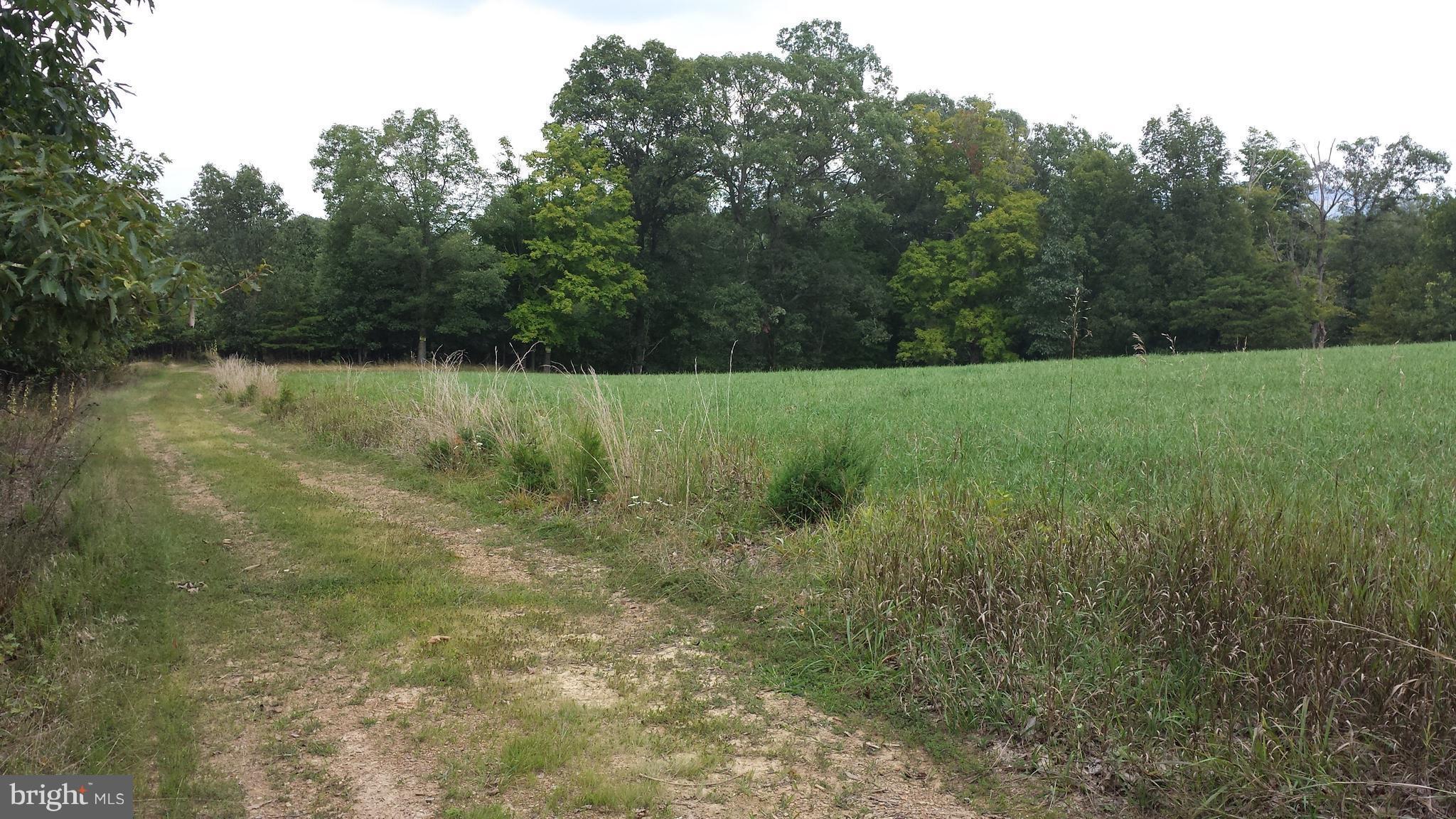 RILLA SMITH ROAD, PURGITSVILLE, WV 26852