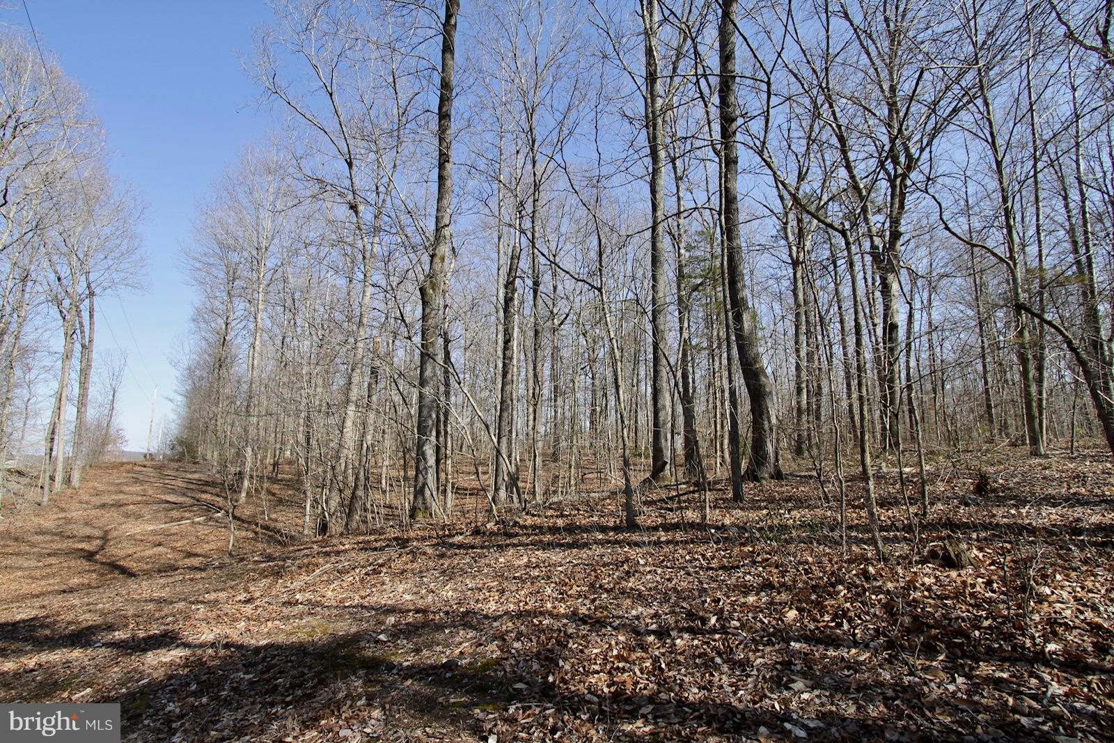 MEANDER RUN ROAD, LOCUST DALE, VA 22948