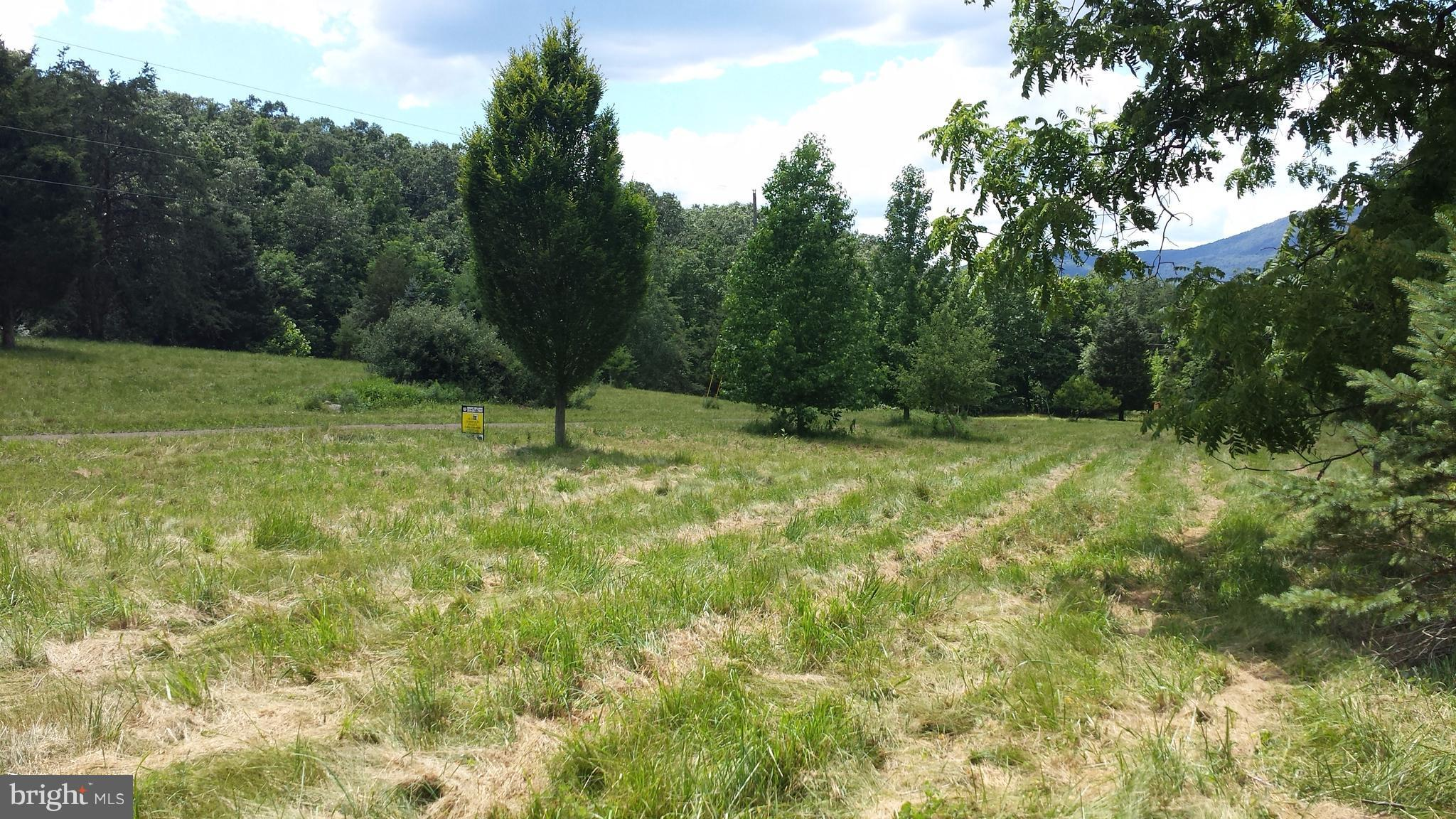 LOT E WEST BROOK ROAD, OLD FIELDS, WV 26845