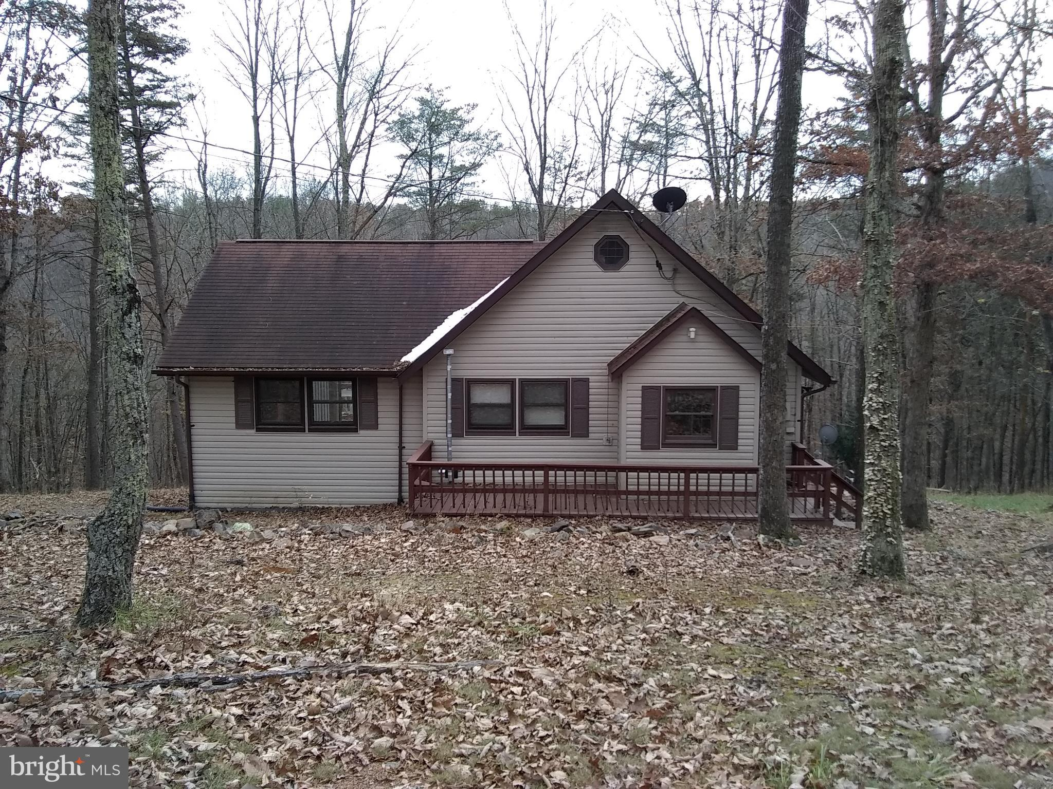 1029 WILD DOG PASS, DELRAY, WV 26714