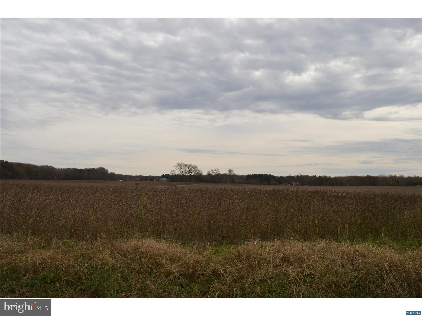 lot 2 HALLTOWN ROAD, MARYDEL, DE 19964