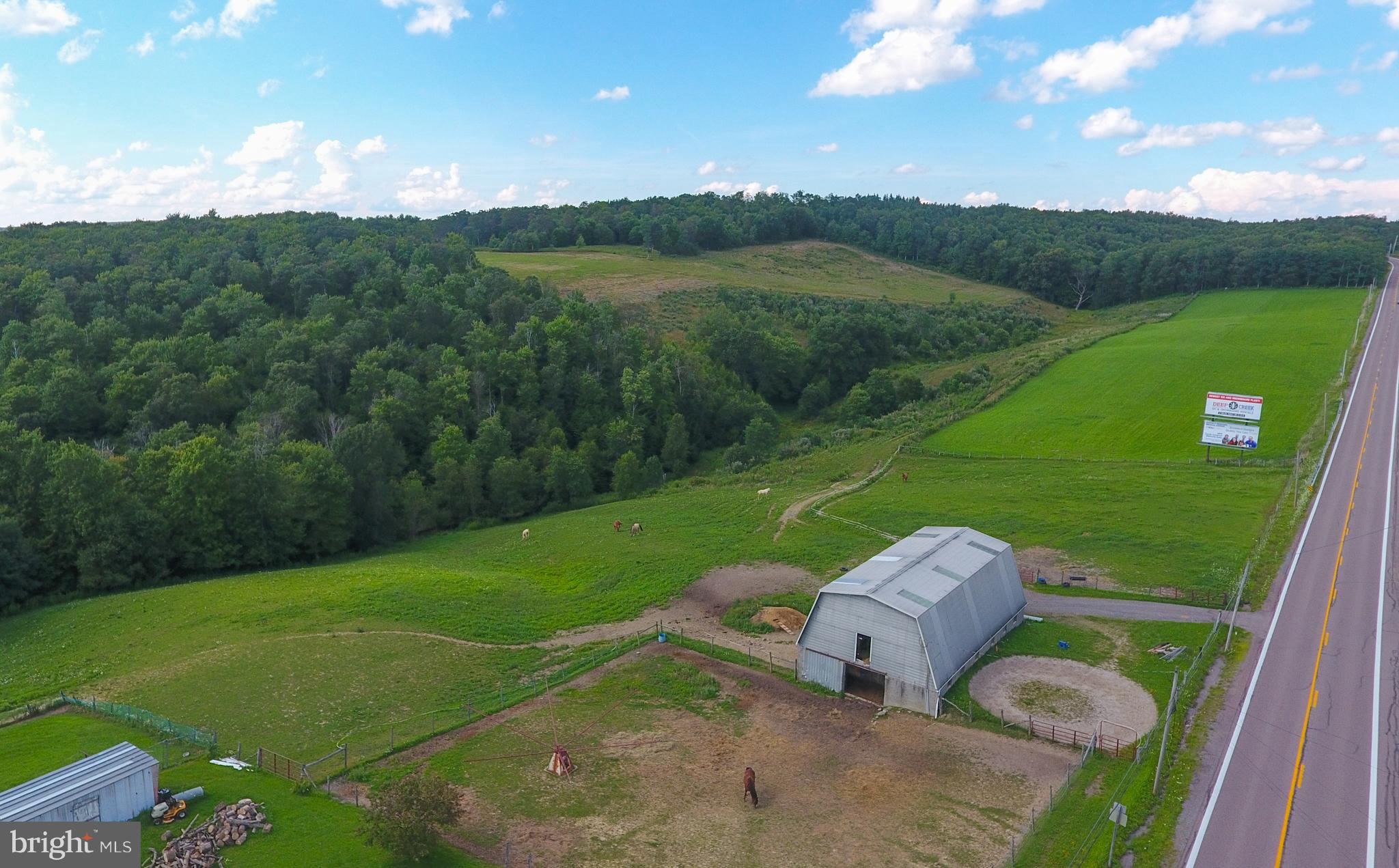 FRIENDSVILLE ROAD 99 ACRES Mc Henry MD 21541