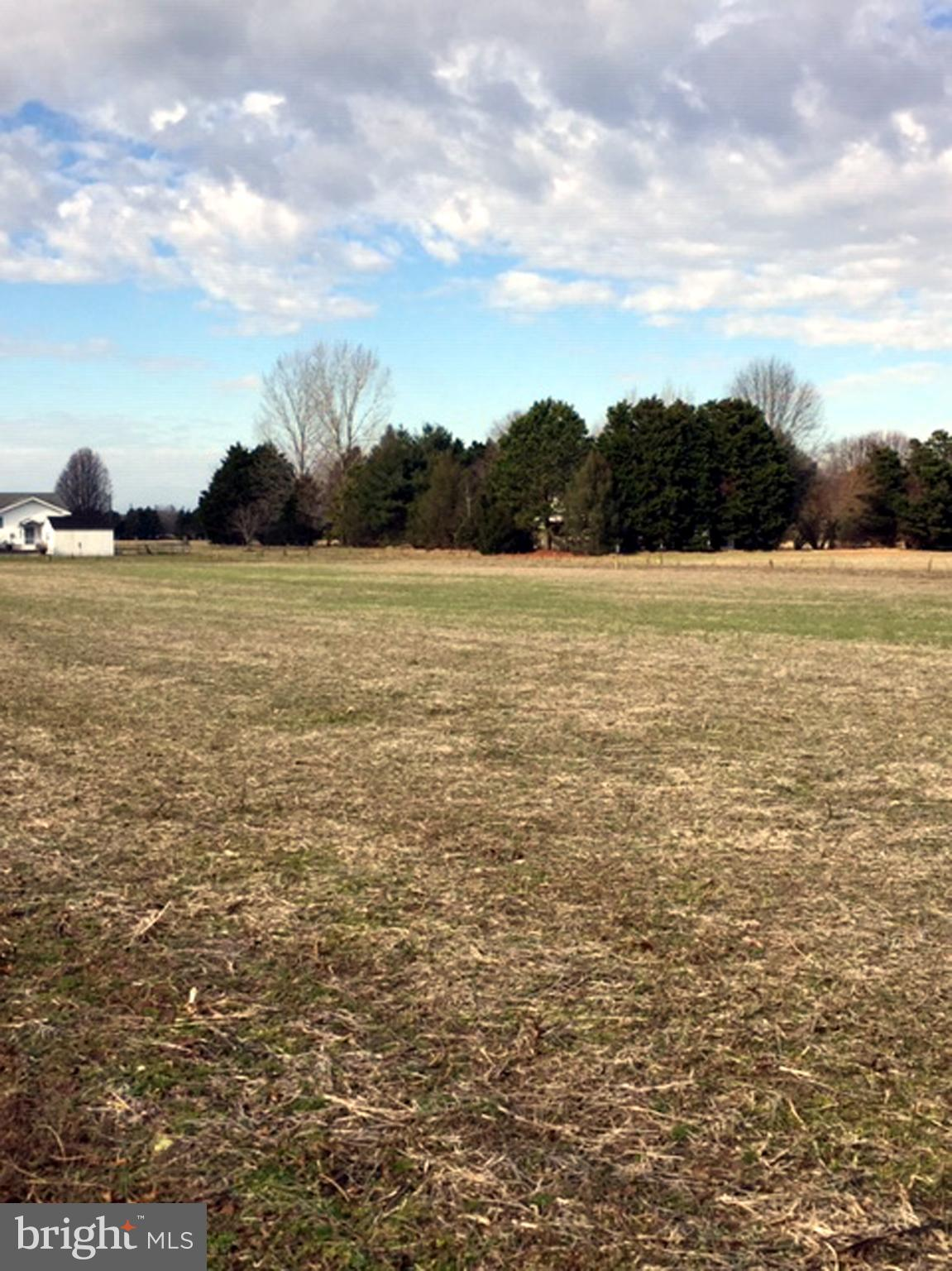 0 COLLINS ROAD LOT #3, BISHOPVILLE, MD 21813