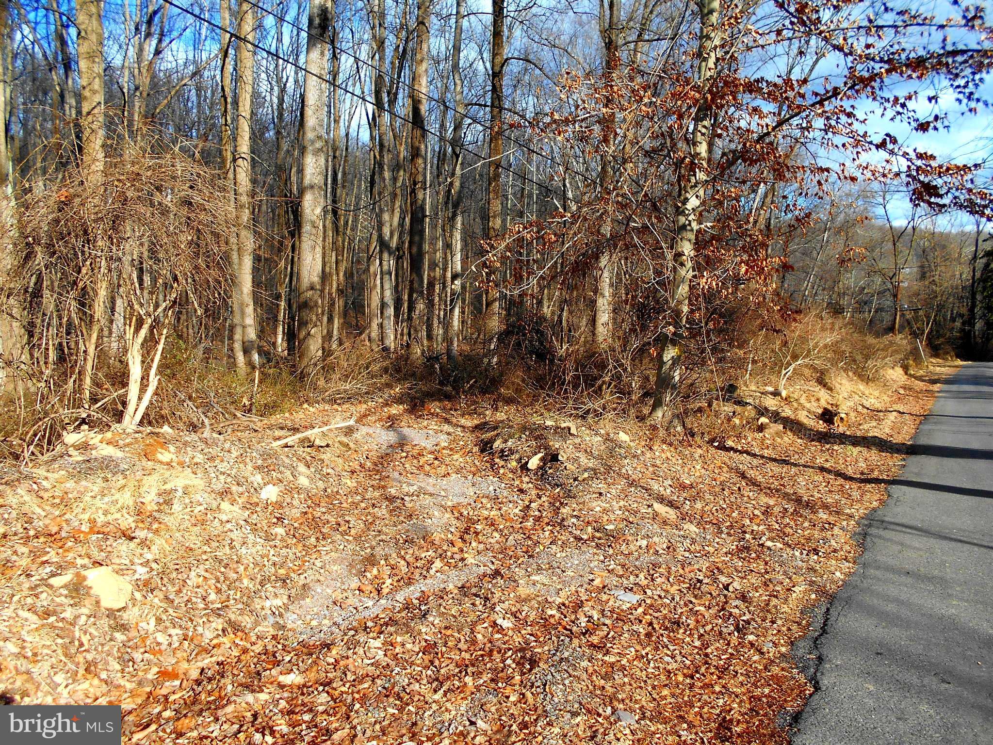 Lot 27-1 Dogwood Lane, Riegelsville, PA 18077