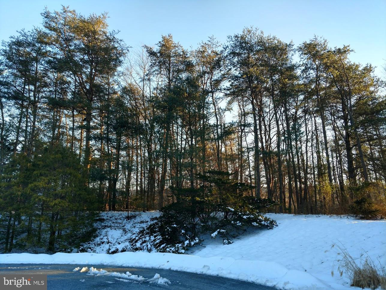 LOT 28 - WEAVER DRIVE, MARYSVILLE, PA 17053