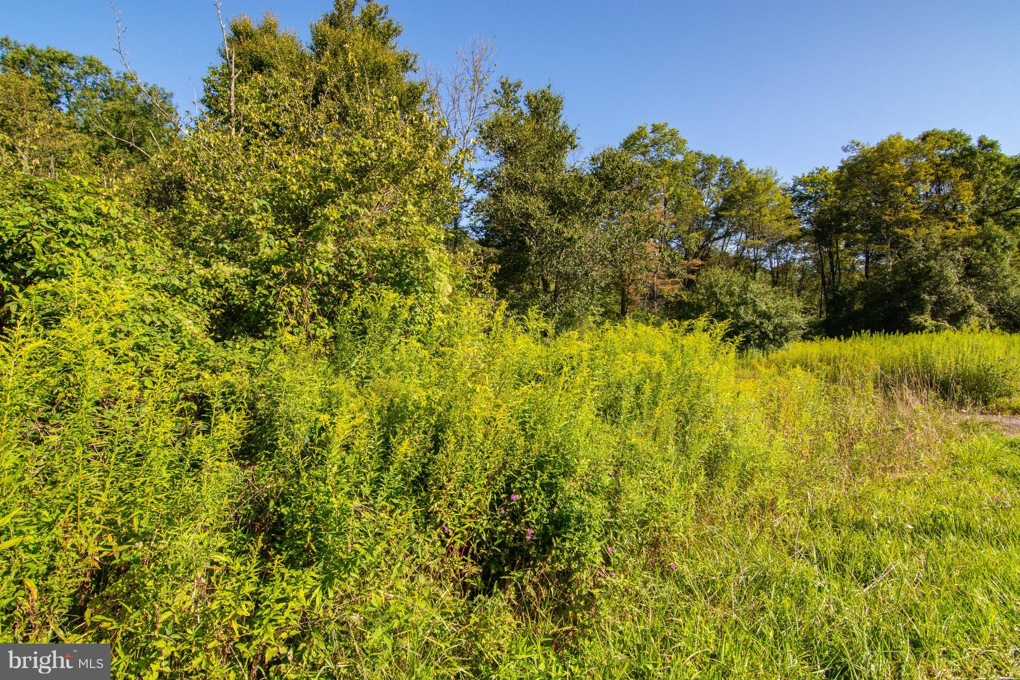 Devils Half Acre, Accident, MD 21520 | Railey Realty