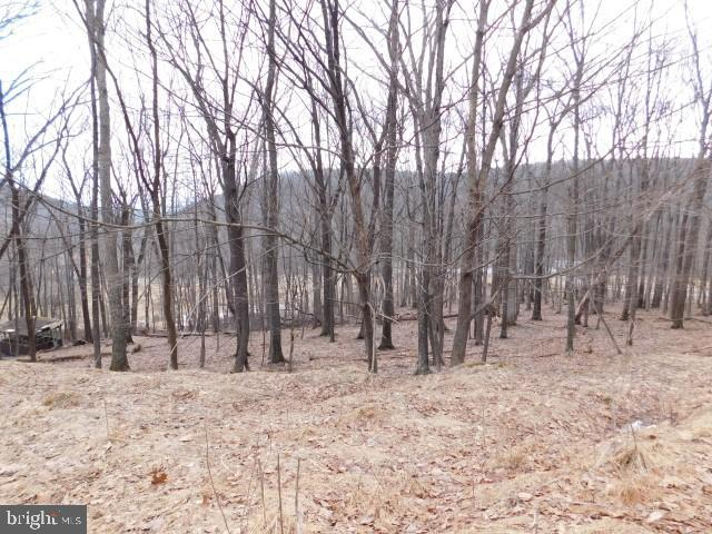 LOT 20 NANCY HANKS FARM, NEW CREEK, WV 26743