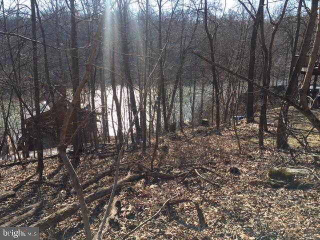 6708 Balmoral Overlook New Market MD 21774