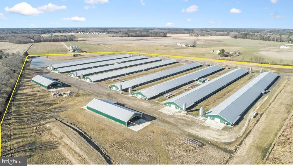 Poultry Chicken Farms for Sale Perdue Contracts