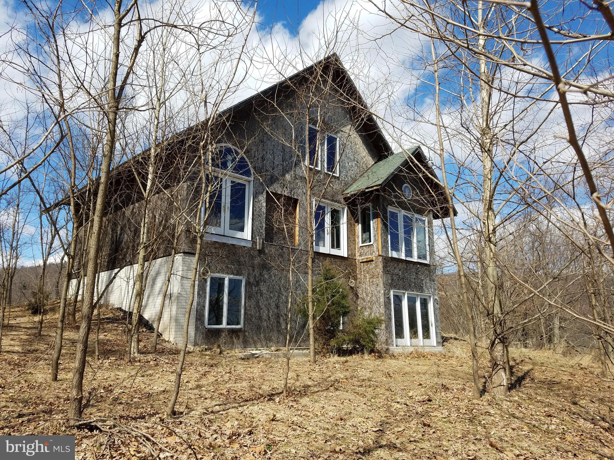 203 SHAWNEE HILL DRIVE, OLD FIELDS, WV 26845