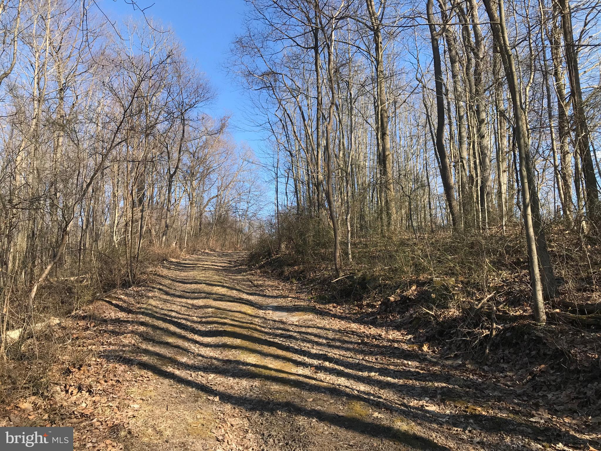 LOWER WHITES CREEK RD, CONFLUENCE, PA 15424