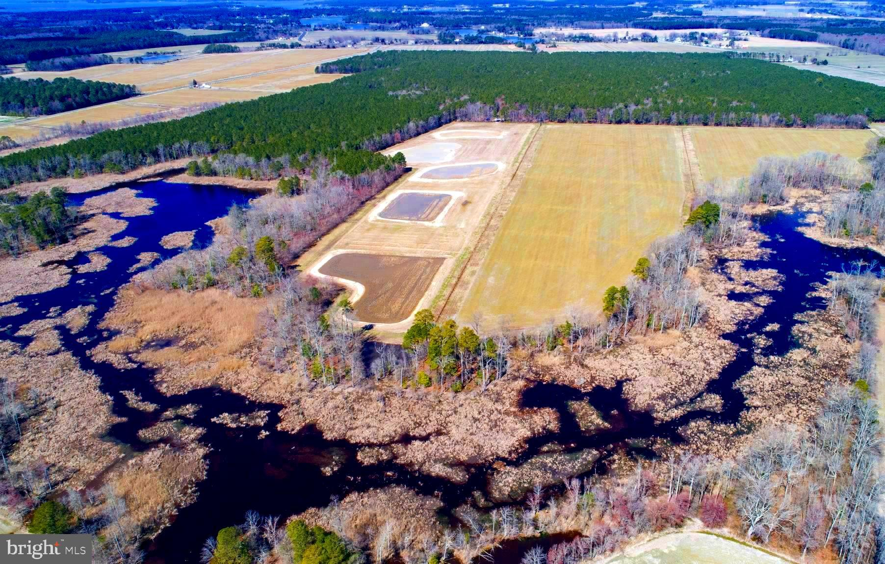 Owner has created a wildlife wonderland with the installation of 5 impoundments, ponds, nature areas and habitat.  Approved RSA!  Reap the benefits of the Sellers foresight and attention to detail.  Well's are in and Pole Barn approved and permitted.  Income producing farm with gain and CREP program.
