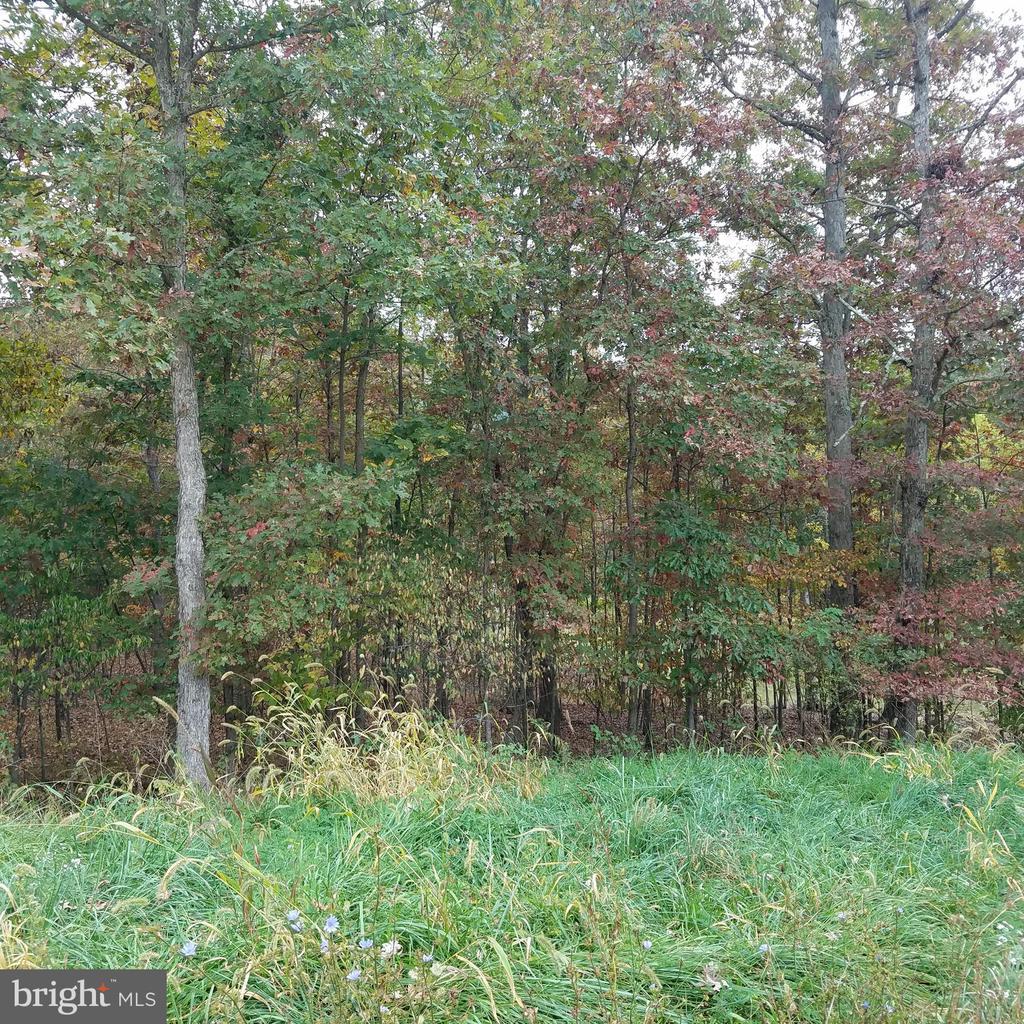 13900 Rolling Oak Drive, Ellerslie, MD 21529