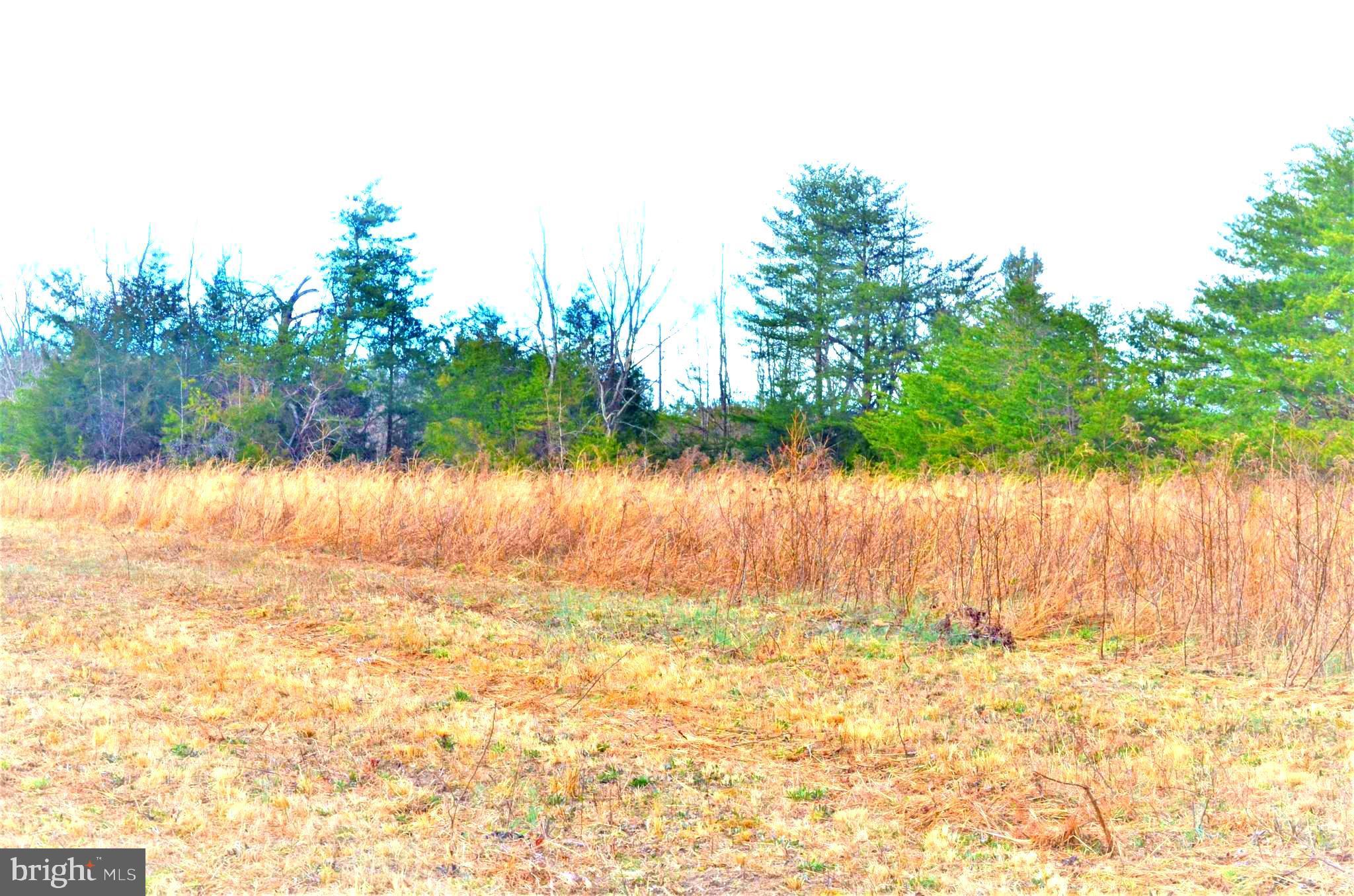 000 Johnson Road, Mineral, VA 23117 | Virginia Capital Realty