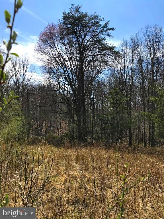 ROCK HILL MILL ROAD, The Plains in FAUQUIER County, VA 20198 Home for Sale