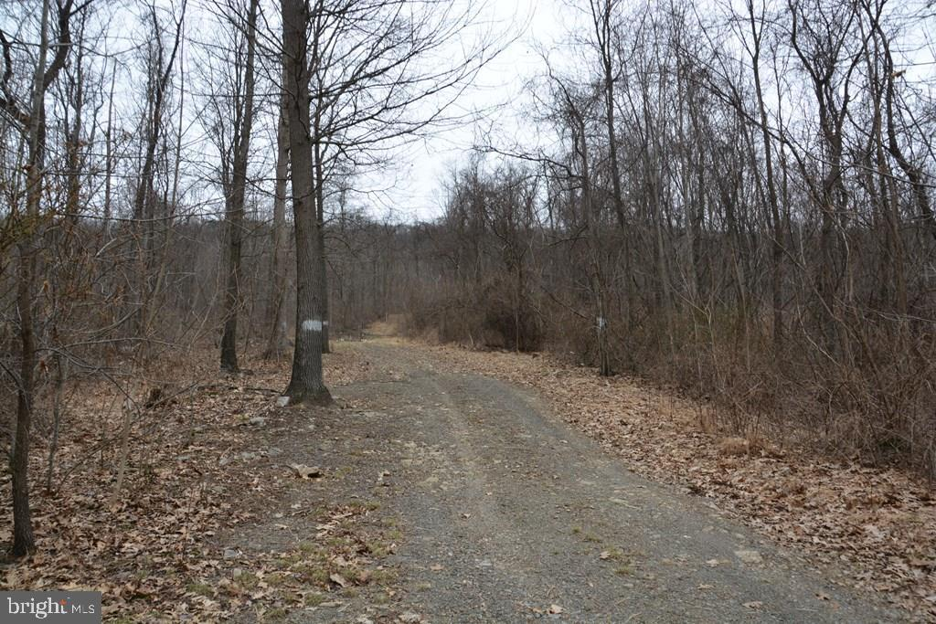 B MOUNTAIN ROAD, IMLER, PA 16655